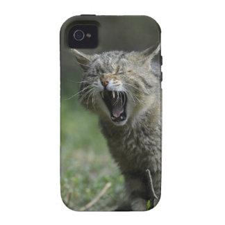 Salvaje iPhone 4 Carcasa