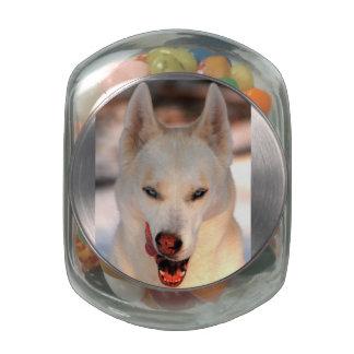Salvaje sobre el tarro del bocado del mascota de l frascos cristal