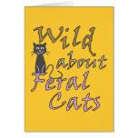 Salvaje sobre los gatos salvajes - gato salvaje di tarjetón