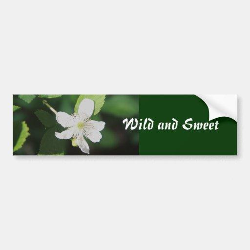 Salvaje y dulce etiqueta de parachoque