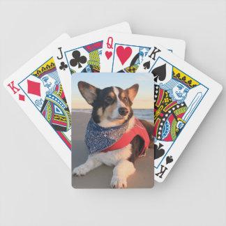Salvavidas de servicio barajas de cartas
