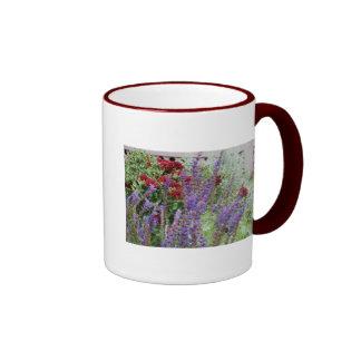 salvia and mums ringer mug