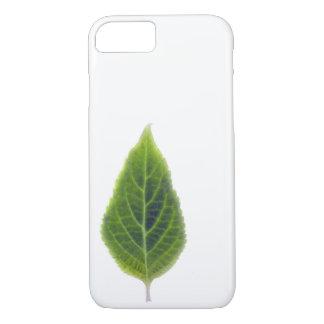 Salvia divinorum leaf cover