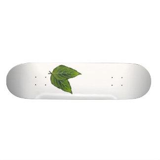 Salvia Divinorum Leaf Skateboard