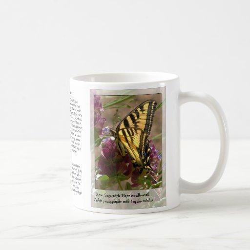 Salvia pachyphylla with Papilio rutulus - Mug