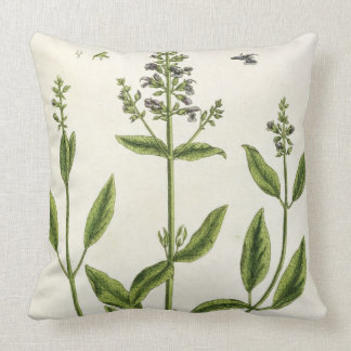 Salviam from 'A Curious Herbal', 1782 (colour engr Throw Pillow