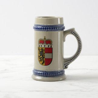 Salzburg, Austria Beer Stein