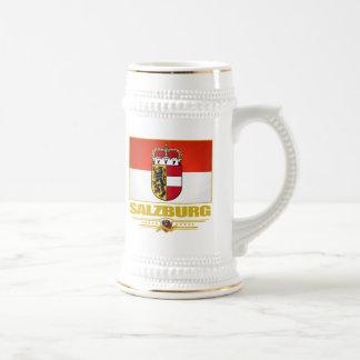Salzburg Beer Stein