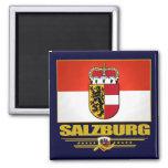Salzburg Refrigerator Magnets