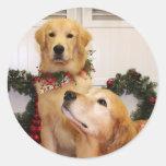Sam and Neuman - Golden Retrievers - Gelao Sticker