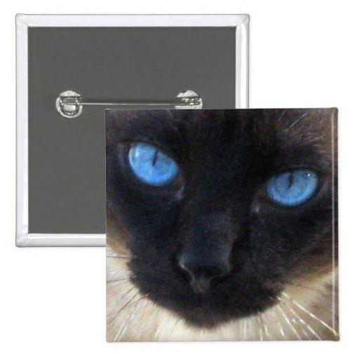 Sam el gato siamés pin cuadrada 5 cm