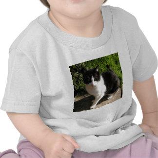 Sam Camisetas