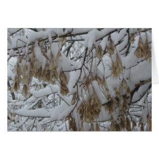 Samaras en nieve tarjeta de felicitación