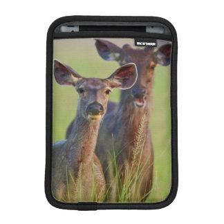 Sambar Deers in the meadows, Corbett National Park Sleeve For iPad Mini