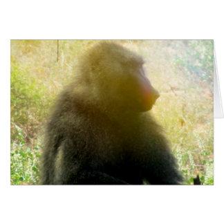 Samburu Baboon Closeup Card