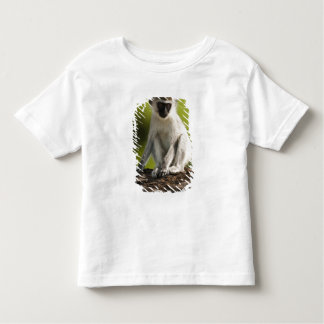 Samburu Game Reserve, Kenya, Vervet Monkey, T-shirt
