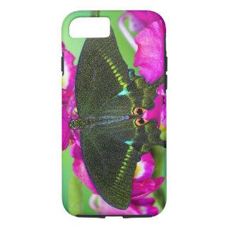Sammamish, borboleta tropical de Washington iPhone 7 Case