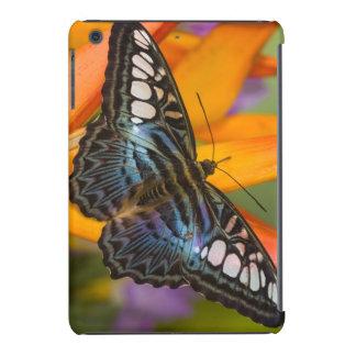 Sammamish, mariposa tropical 24 de Washington Fundas De iPad Mini
