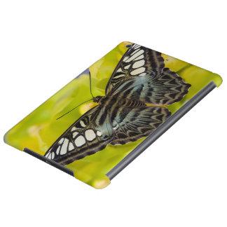 Sammamish, mariposa tropical 38 de Washington