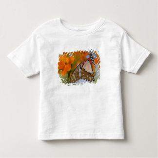 Sammamish, Washington. Mariposas tropicales 47 Camisas