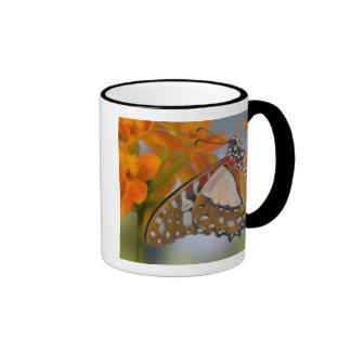 Sammamish, Washington. Mariposas tropicales 47 Taza De Dos Colores