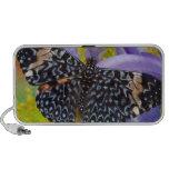 Sammamish, Washington. Mariposas tropicales 55 iPod Altavoces