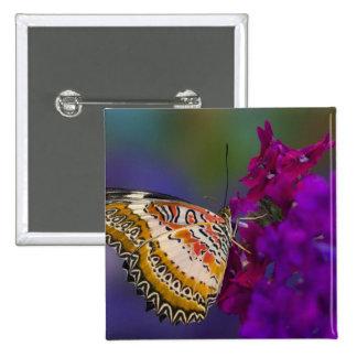 Sammamish, Washington. Mariposas tropicales 64 Pin Cuadrada 5 Cm