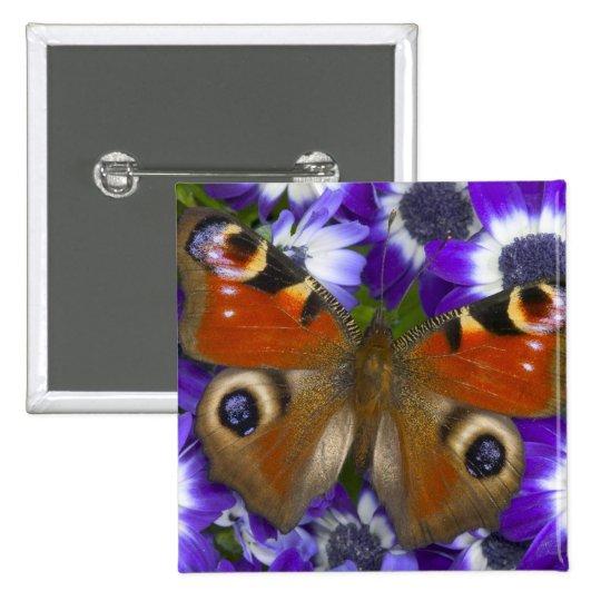 Sammamish Washington Photograph of Butterfly 10 Pinback Button