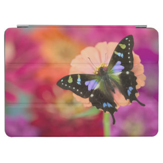 Sammamish Washington Photograph of Butterfly 11 iPad Air Cover
