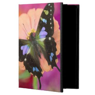 Sammamish Washington Photograph of Butterfly 11 iPad Air Cases