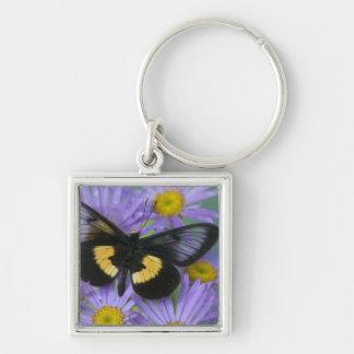 Sammamish Washington Photograph of Butterfly 13 Keychain