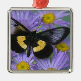 Sammamish Washington Photograph of Butterfly 13 Christmas Tree Ornaments