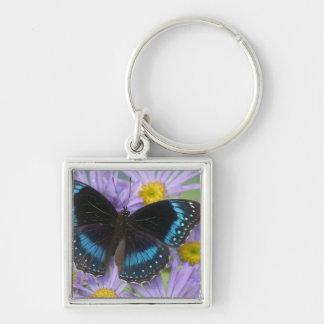 Sammamish Washington Photograph of Butterfly 14 Keychain