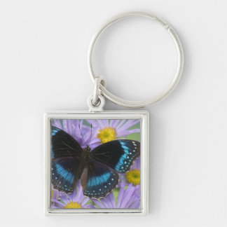 Sammamish Washington Photograph of Butterfly 14 Keychains