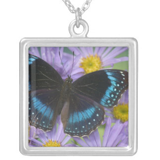 Sammamish Washington Photograph of Butterfly 14 Necklaces