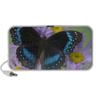 Sammamish Washington Photograph of Butterfly 14 Speakers