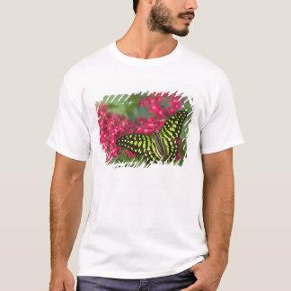 Sammamish Washington Photograph of Butterfly 16 T-Shirt