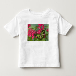 Sammamish Washington Photograph of Butterfly 16 Toddler T-shirt
