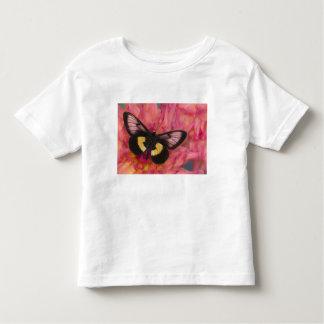Sammamish Washington Photograph of Butterfly 17 Toddler T-shirt