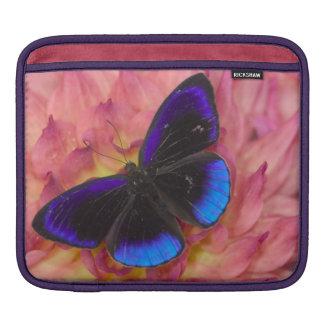 Sammamish Washington Photograph of Butterfly 18 iPad Sleeve