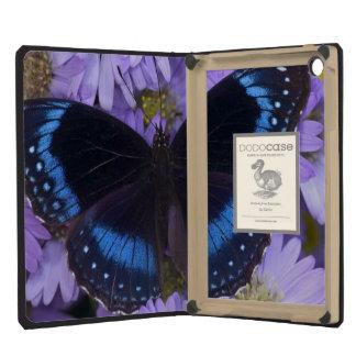 Sammamish Washington Photograph of Butterfly 20 iPad Mini Case
