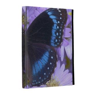 Sammamish Washington Photograph of Butterfly 20 iPad Folio Cases