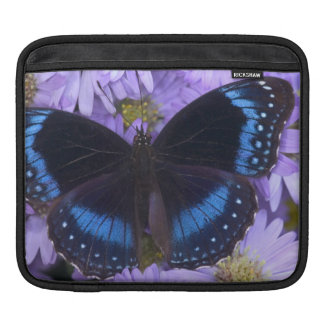 Sammamish Washington Photograph of Butterfly 20 Sleeve For iPads
