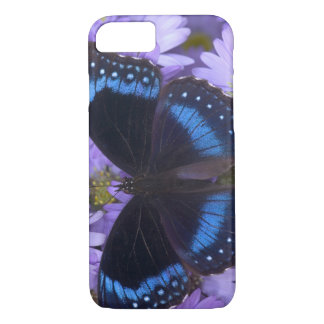 Sammamish Washington Photograph of Butterfly 20 iPhone 7 Case