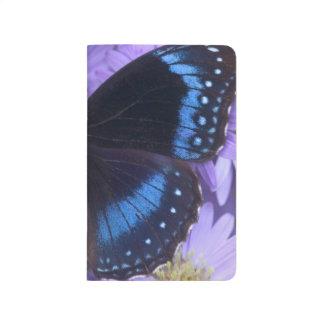 Sammamish Washington Photograph of Butterfly 20 Journal