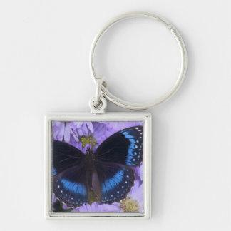 Sammamish Washington Photograph of Butterfly 20 Keychains