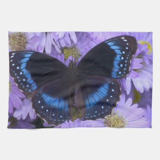 Sammamish Washington Photograph of Butterfly 20 Hand Towels