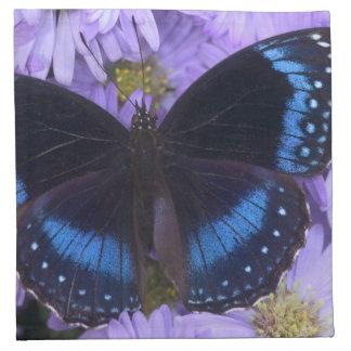 Sammamish Washington Photograph of Butterfly 20 Napkins