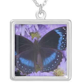 Sammamish Washington Photograph of Butterfly 20 Custom Jewelry