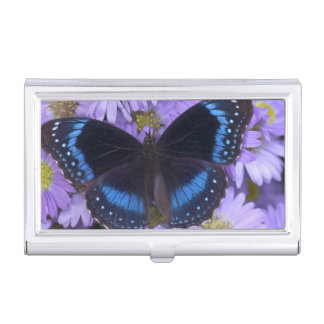 Sammamish Washington Photograph of Butterfly 20 Case For Business Cards